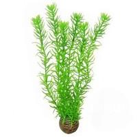 Superfish Easy Plants Hoog #1