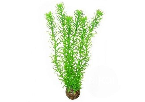 Easy Plants High #1
