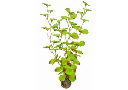 Easy Plants High #13 - Silk