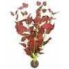 Superfish Easy Plants Hoog #17 - Zijde