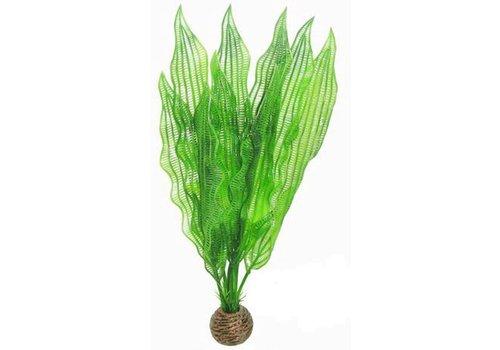 Easy Plants High #5