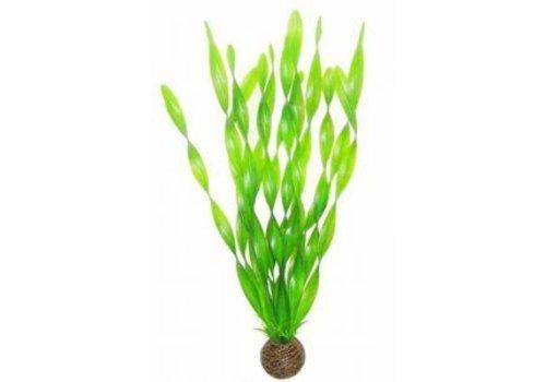 Easy Plants High #6