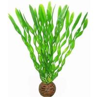 Superfish Easy Plants Middel #1