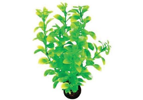 Easy Plants Middel #2