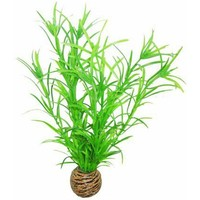 Superfish Easy Plants Medium #3