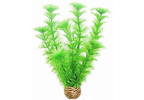 Easy Plants Middel #4