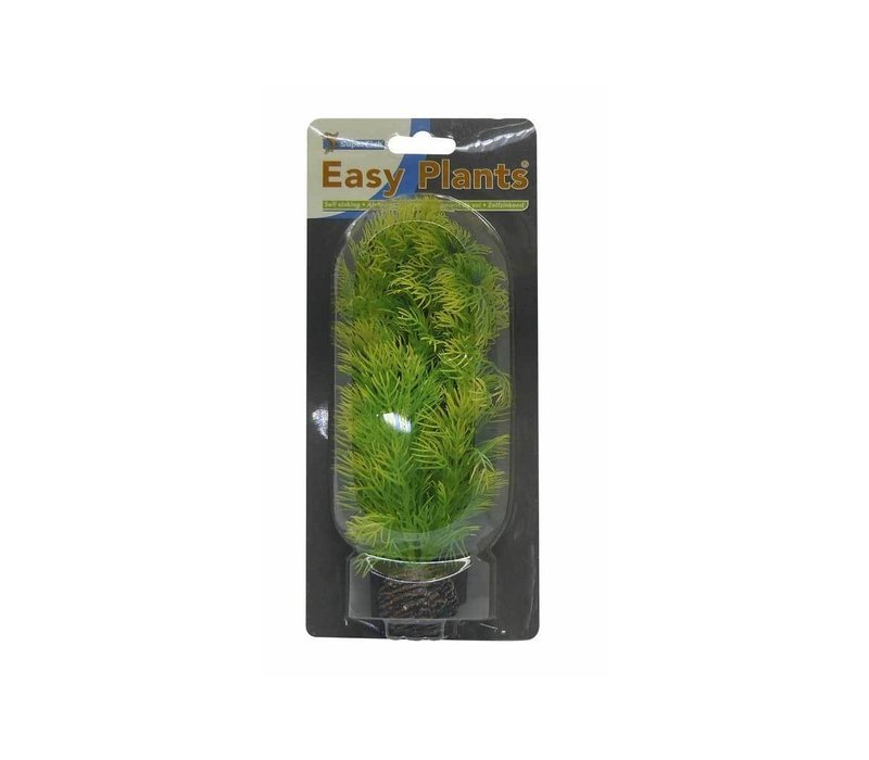 Superfish Easy Plants Medium #5