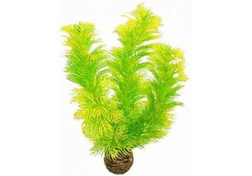 Easy Plants Middel #5