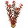 Superfish Easy Plants Middel #7