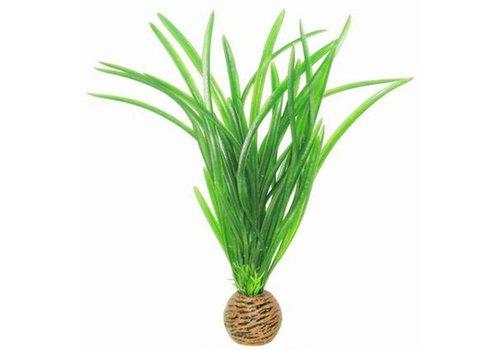 Easy Plants Medium #8