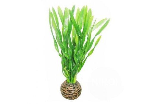 Easy Plants Voorgrond #6