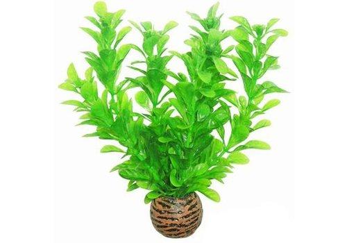 Easy Plants Voorgrond #8
