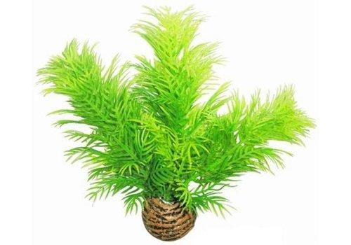 Easy Plants Voorgrond #9