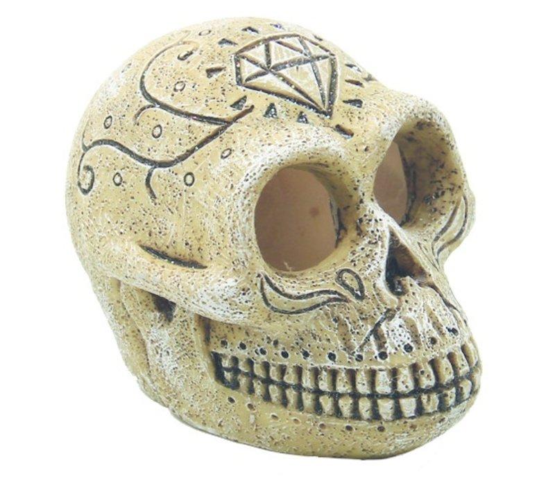 Superfish Skull Monkey