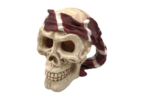 Skull Red Pirate