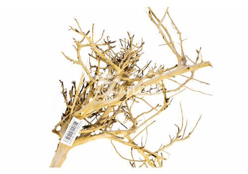 Aquaflora Scaping Twigs