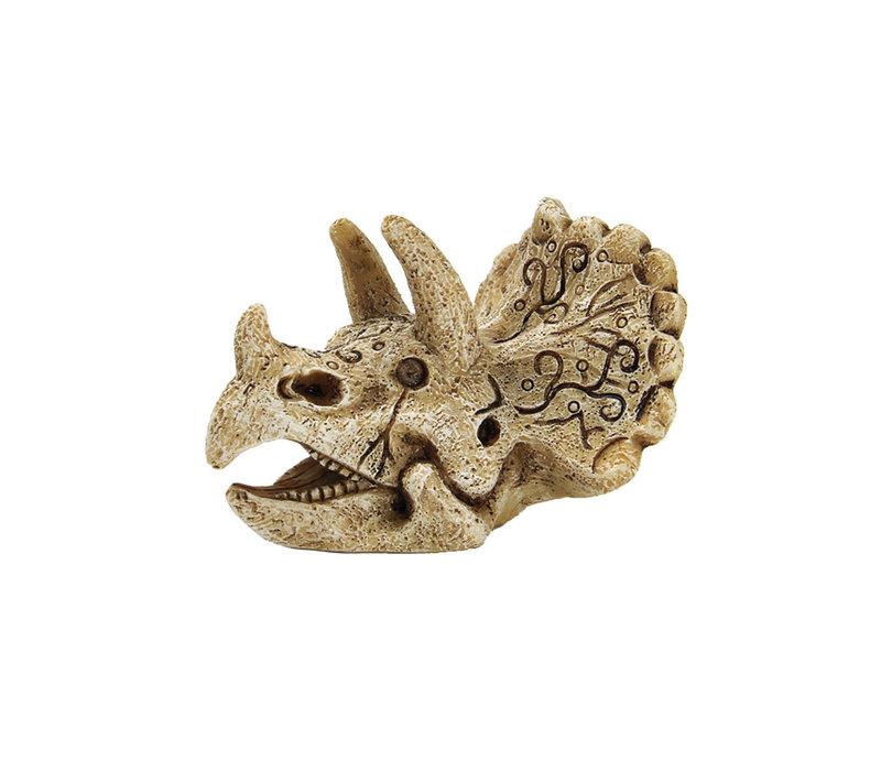 Superfish Skull Triceratops - Small