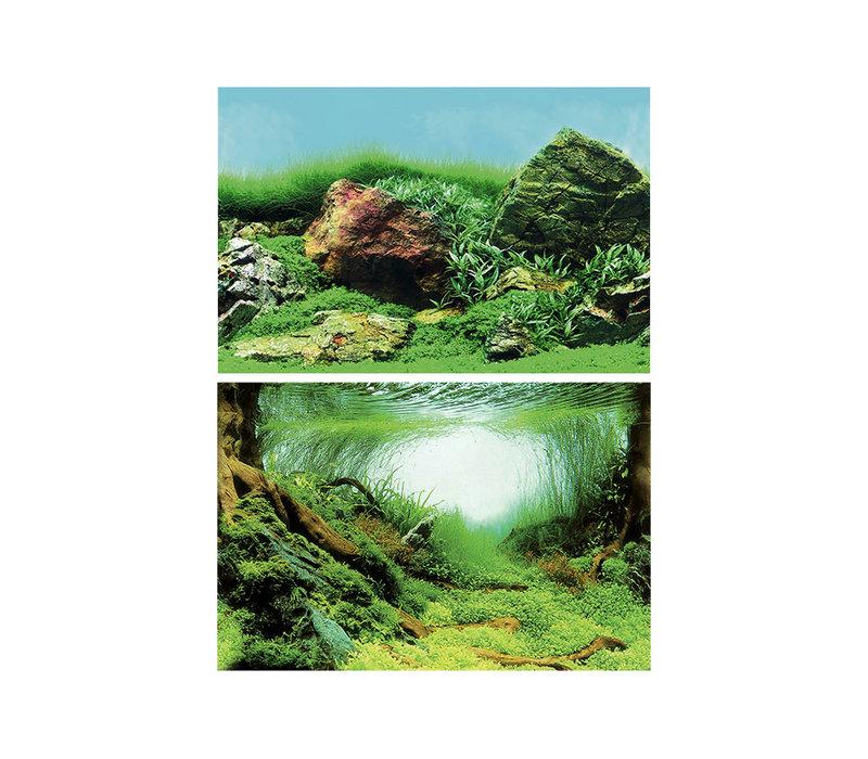 Superfish Deco Posters C