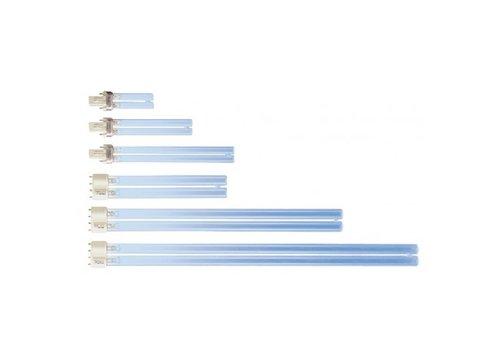 UV PL Lamp
