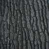 Juwel Juwel Achterwand Str (50x60cm)