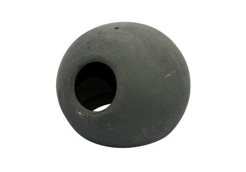 Fish Home Ball