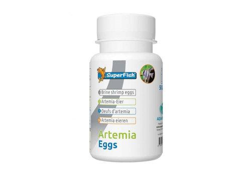 Artemia Eieren