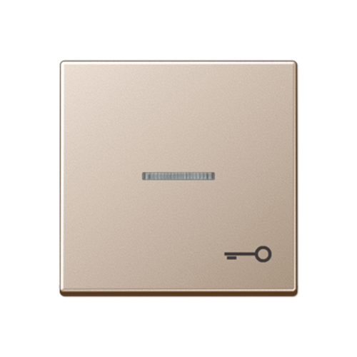 JUNG schakelwip met sleutel-symbool controlevenster A-range champagne (A 590 KO5T CH)