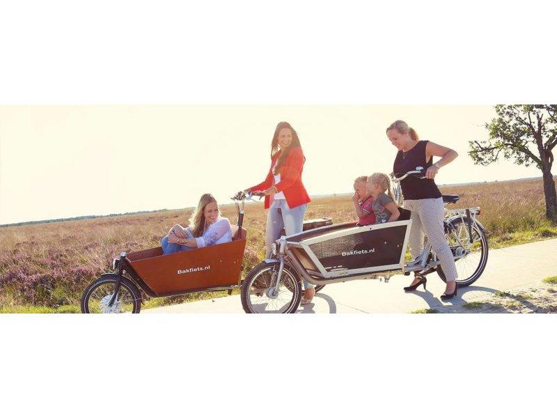Bakfiets.nl oog M12 TBV Kettingslot Cargo