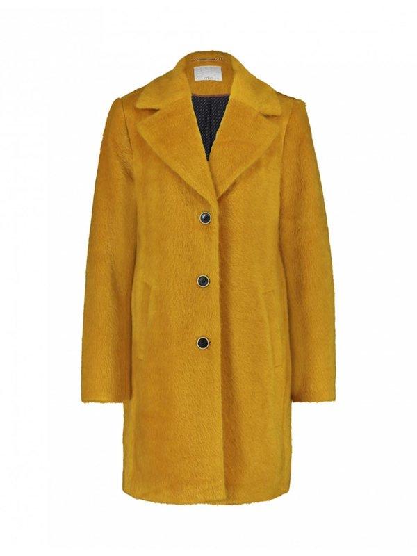 Aaiko Isko Hairy Ray Honey Coat