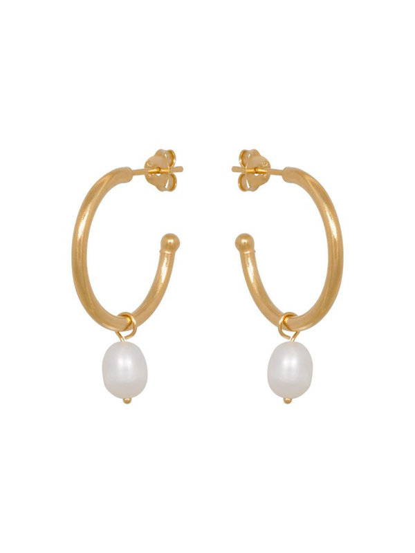 Eline Rosina Freshwater Pearl Hoops In Gold Plated