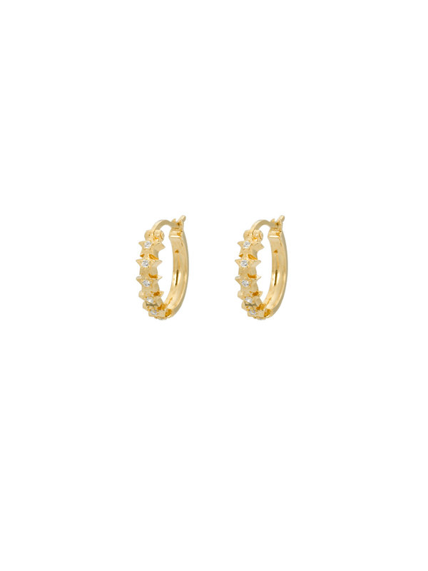 Anna + Nina Starry Ring Earrings Goldplated