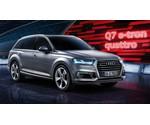 Laadkabel Audi Q7 e-tron