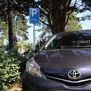 Parkeerbord Elektrische Auto op Paal