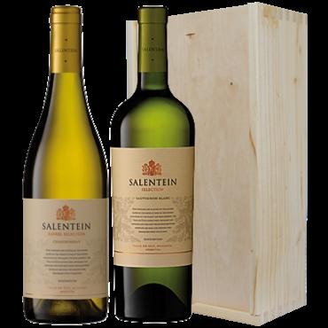 Wijnkado Argentinië Salentein wit