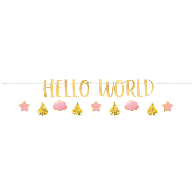 "Mega Banner ""Hello World""  Roze 1.77cm x 18cm  (2D)"