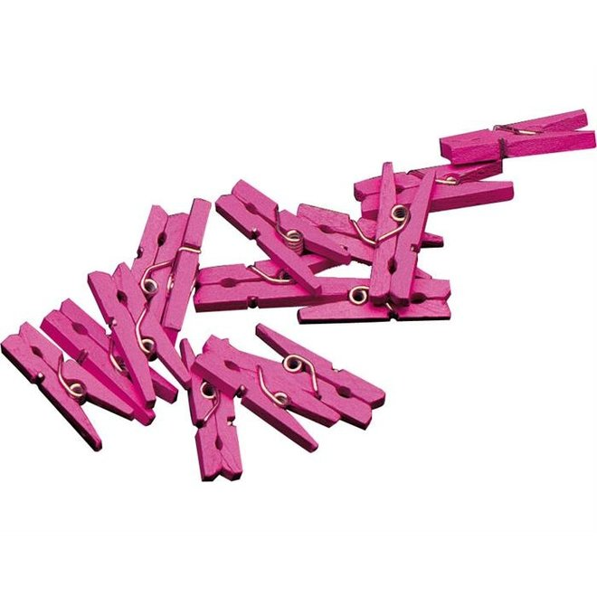 Mini Knijpertjes Baby Roze (20ST)