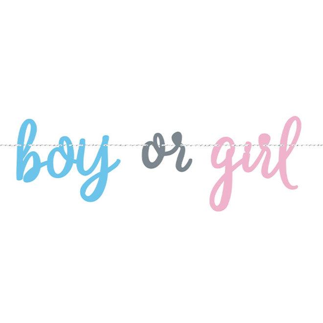 Letterslinger Boy or Girl 2.1M