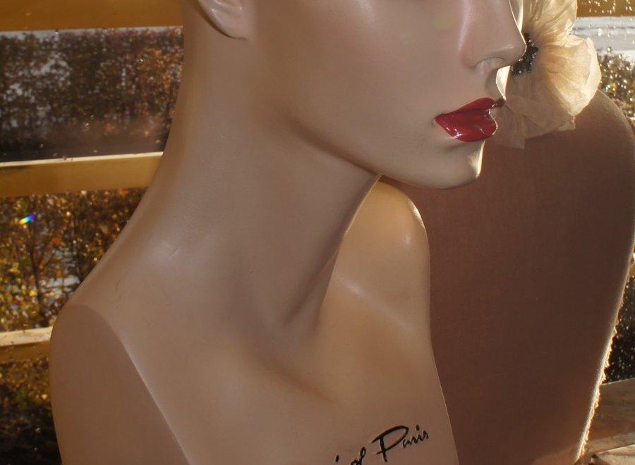 Very beautiful, female fashion model head with long eyelashes
