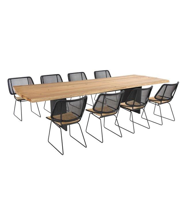 Ep - Plank Stam 9 delige tuinset tafel 300x110x76CM