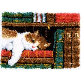 Knoopkit slapende kat in boekenrek