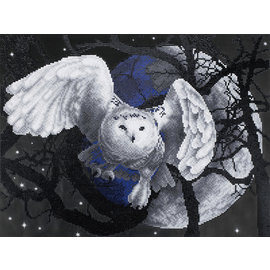 Daimond Painting Flaying Owl
