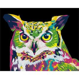 Painting by numbers kit 50x40cm Rainbow Owl