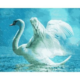 Painting by numbers 40x50cm White Swan