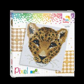 Pixel set - Luipaard