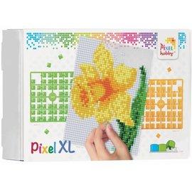 pixel XL op vier basisplaten Narcis