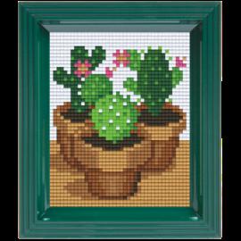 Pixelpakket Cactussen