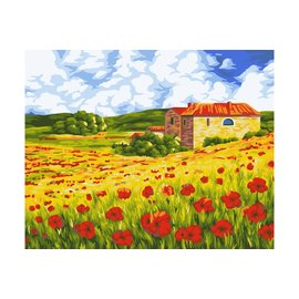 Painting by numbers 40x50cm Poppy Meadow
