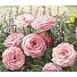 Borduurpakket Summer Bloom 32 x 37 cm