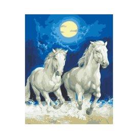 """Collection d'art Bedrukt stramien """"Witte paarden"""""""