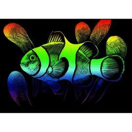 Mini kraskaart.12,5x17,5cm regenboog clownvis